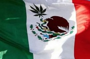 Mexico to Open Debate on Use of Marijuana