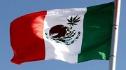 mexico flag with cannabis leaf